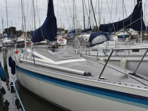 Luffe 37 - te koop bij Scandinavian Yachts Workum